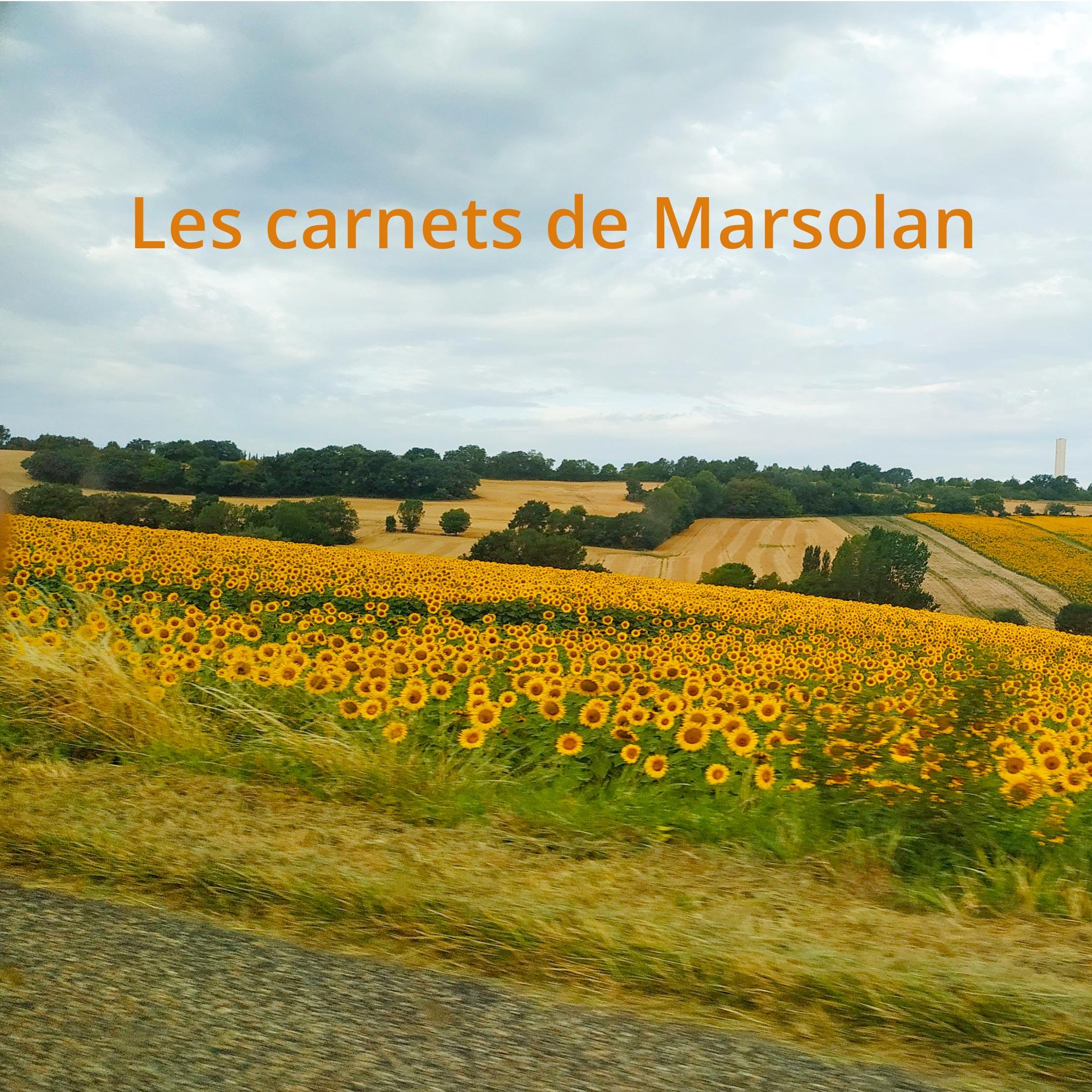 les_carnets_de_marsolan